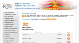 rnpdigital_consultas