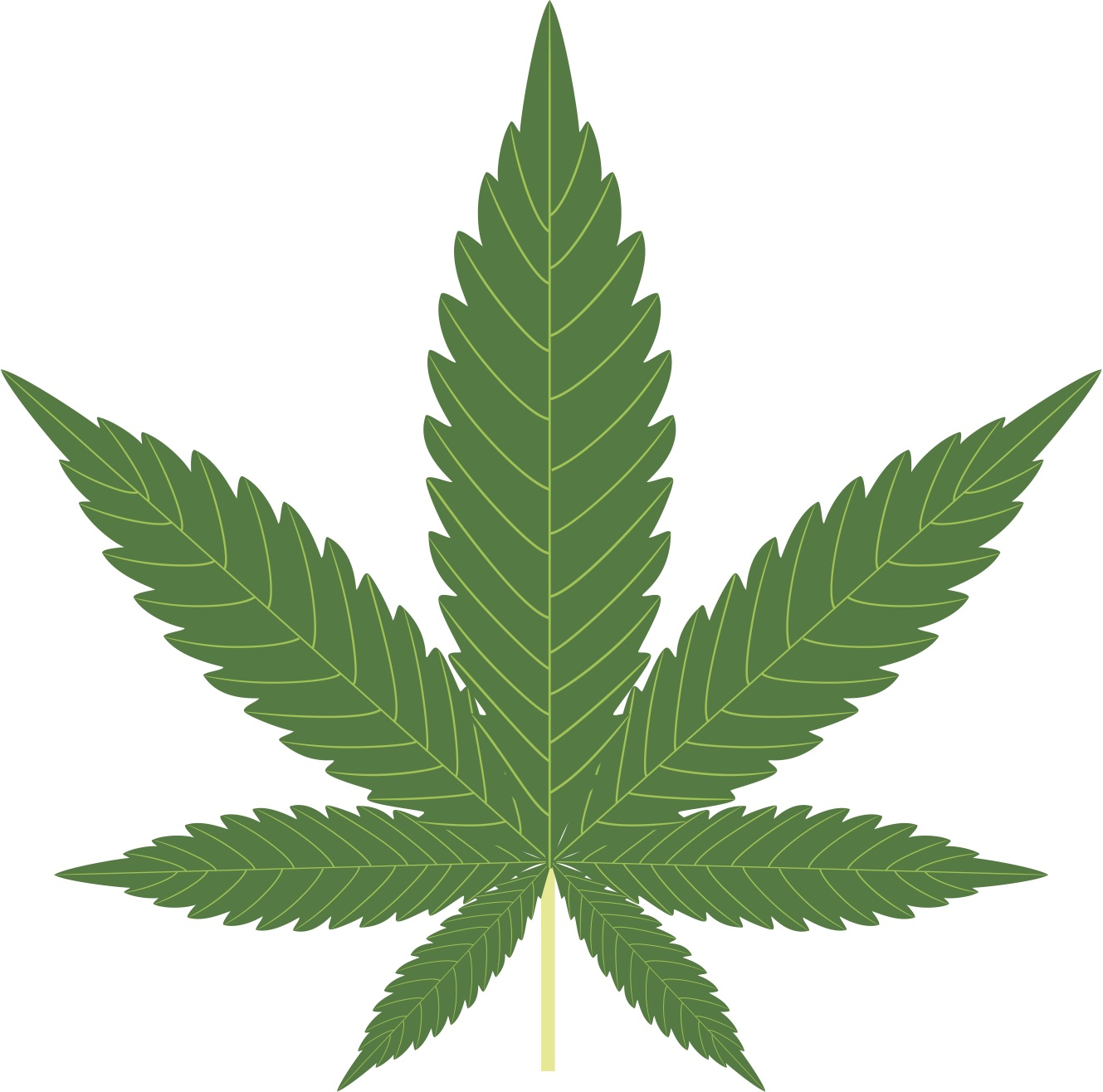 Marijuana (Cannabis) in Costa Rica