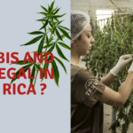 Cannabis and Hemp Legalization in Costa Rica